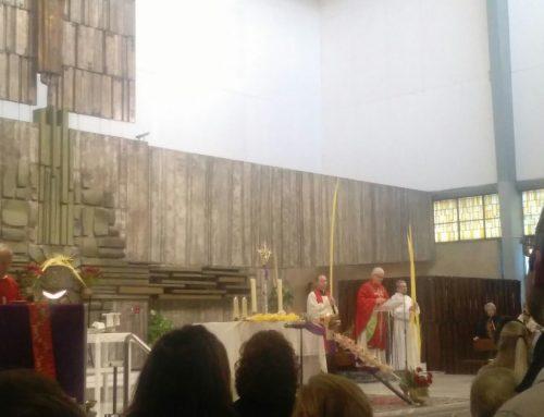 DOMINGO DE RAMOS: PROCESIÓN DE PALMAS