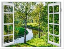 ventana17